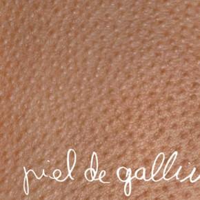 Exposición «Piel de gallina» de REGINA JOSÉ GALINDO